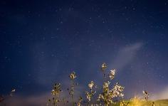 10 de Mayo,Nocturna sacada desde La Torrecilla en Marbella.
